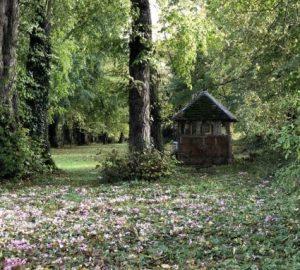 Chateau de la Ruche