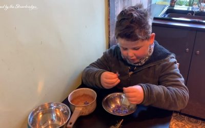 Young Master Strawbridge Cooks His Omelette